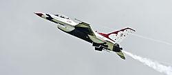 Thunderbird_6.jpg