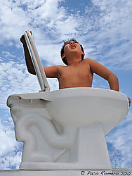ToiletFreedom001_9x12_web.jpg