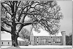 Tree_and_Barn.jpg