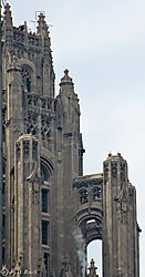 Tribune_Tower_Details-0179.jpg