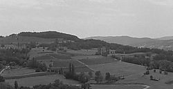 Vineyards_of_Jongieux.jpg