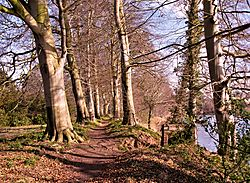 Warwick_Hall_River_Walk_Photos.jpg
