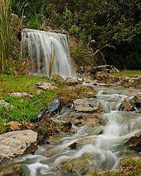 Waterfall_Cropped.jpg