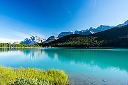 Waterfowl_Lake-5435.jpg