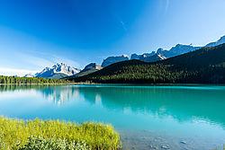 Waterfowl_Lake-5435.jpg
