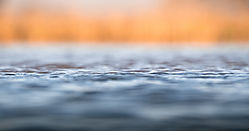 Waterline_Zimanaga_Hide_KwaZulu_Natal_SA.jpg