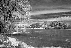 Winter_2.jpg