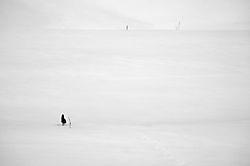 Winter_Field.jpg