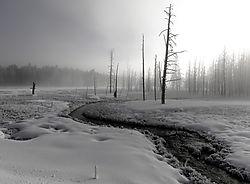 Winter_Scene_2_NIK.jpg