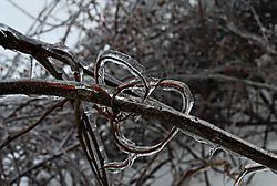 Winter_jacket.jpg