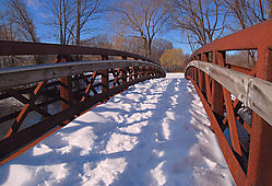 Winterwalk_L_0747_copy.jpg