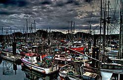 WoodrowJacksonPhotographyPort_Hard_Vessels_1.jpg