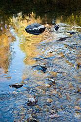 Yosemite_Creek-3480.jpg