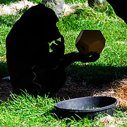 Zoo-2019-0071.jpg