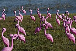 birds_of_another_sort.jpg