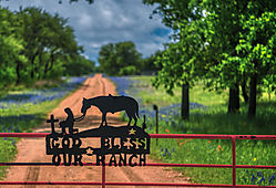 bluebonnet_road_cropped_DSC_2533.jpg