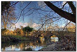 bridge04_5_6v2.jpg