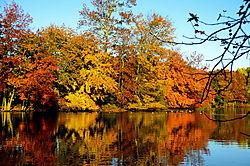 crestwood_pond_4.jpg