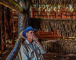 cubano_portrait.jpg