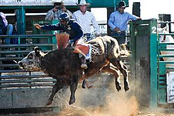 email_Lincoln_HS_Rodeo_6_2009_10_25_DSC_1284_1_of_1_.jpg