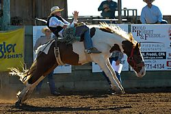 email_Lincoln_HS_Rodeo_9_2009_10_25_DSC_1272_1_of_1_.jpg