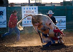 email_Rodeo_group_shots_2_DSC_0136_1_of_1_.jpg