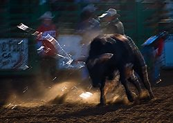 email_Rodeo_group_shots_4_DSC_0129_1_of_1_.jpg