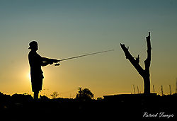 fisherman6.jpg