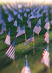 flags_lens_baby_1.jpg