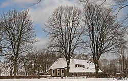 foto-schapen-winter12.jpg
