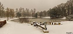 foto-sneeuw-winter2.jpg