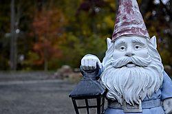 gnome_buddy.JPG