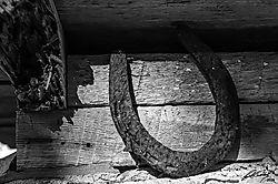 horseshoe_DxO.jpg