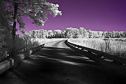 infrared-colonial-williamsburg_2864.jpg