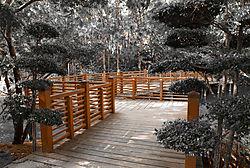 japanesegardens122011_2059_.jpg