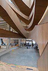 library-1038.jpg