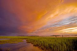 marsh_sunset_c_levels.jpg