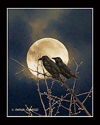 moon_2ravens_DSC5132.jpg