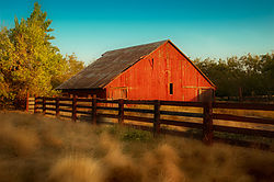 old_barn_in_Oakdale.jpg
