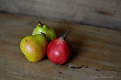 pears11.JPG