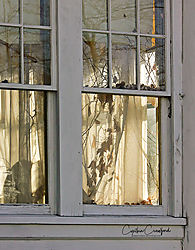 porch-windows_abanonded.jpg