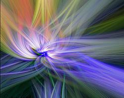 purple_white_flowers_abstract_DSC1857.jpg