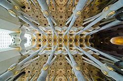 sagrada_ceiling.jpg