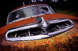 scoop-rust.jpg