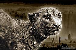 sephia-cheetah.jpg