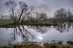 spiegelung_1262_3001.jpg