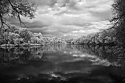 the-lake-.jpg