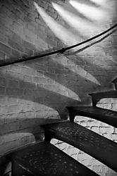 tiger_stairs_b_W.jpg