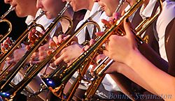 trumpeters_contest_size.jpg