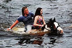 washing_the_horses_14.jpg